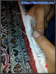 4 esfahan process