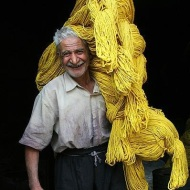 wool yellow